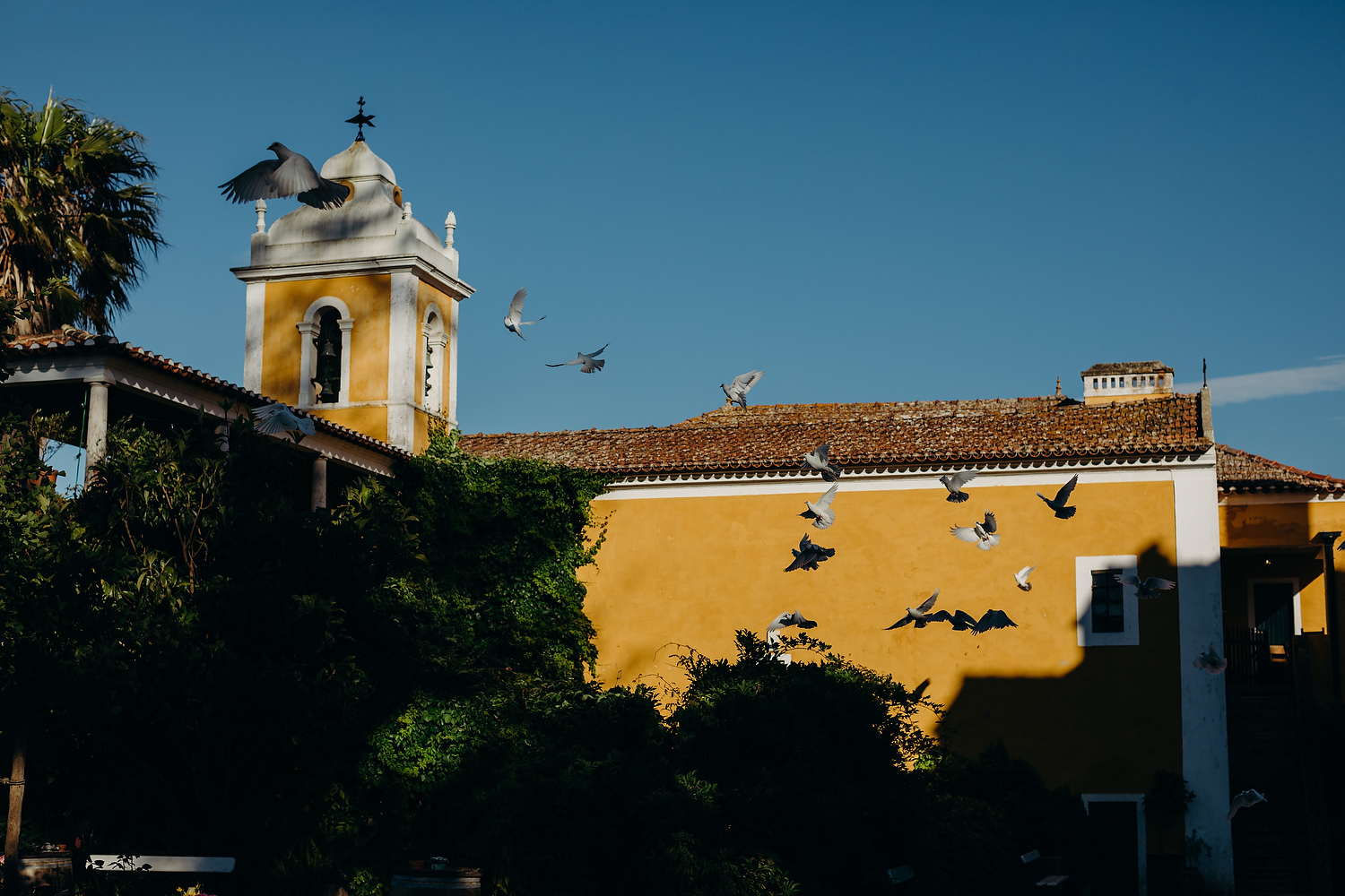 birds fly in front of Baroque chapel