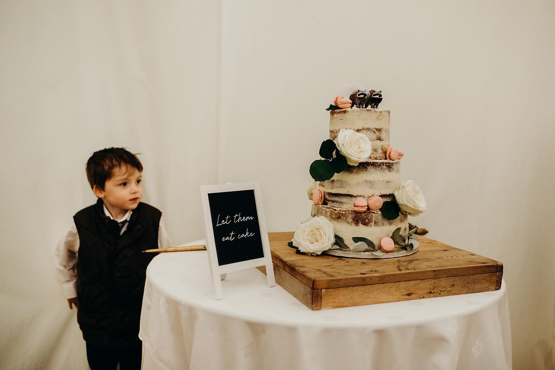 kid stares at wedding cake
