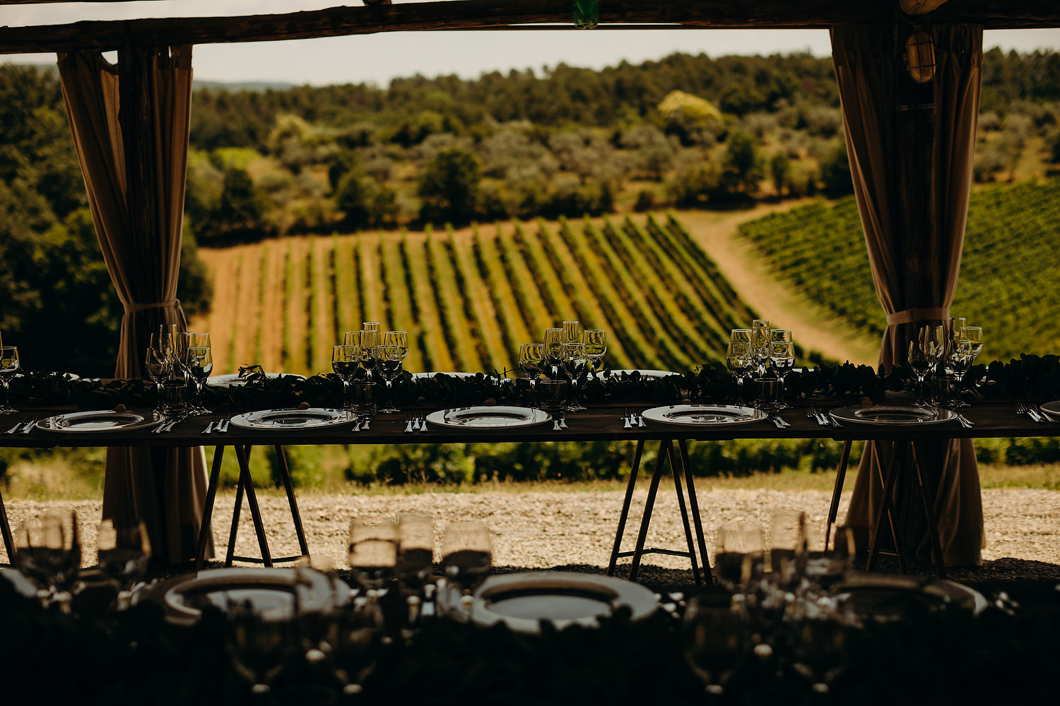 Vineyard in background of wedding reception